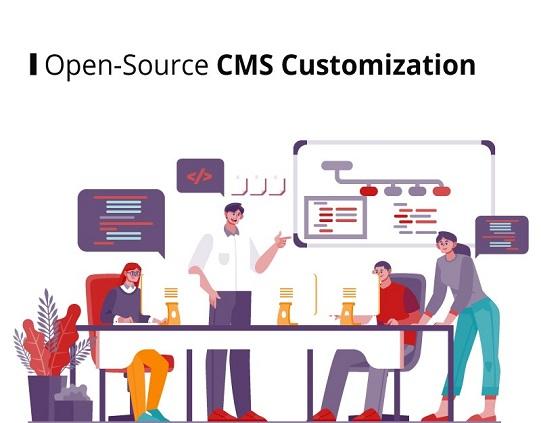 CMS Customization - WordPress Tec