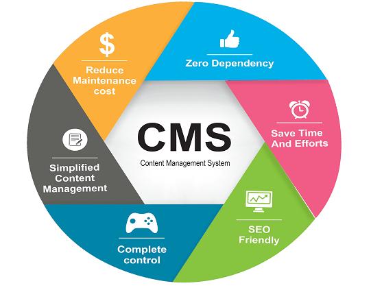 Custom CMS Integration - WordPress Tec